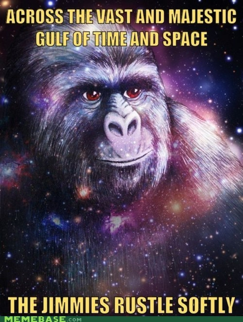 jimmy Memes rustles universe - 6241624320