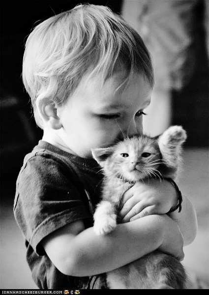 Babies Cats cyoot kitteh of teh day holding hoomins hugs kids kitten - 6241684992