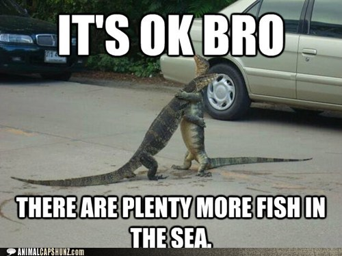 break up,bro,buddy,friends,hug,lizards,plenty of fish,sea