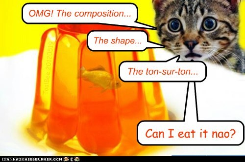 OMG! The composition... The ton-sur-ton... Can I eat it nao? The shape... ToolBee 20120519