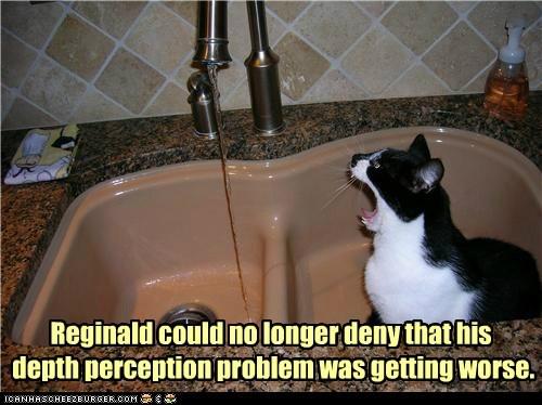 aim depth perception drink miss see sink water - 6243759104