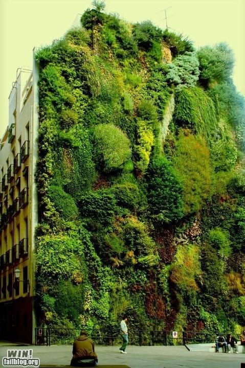 architecture classic design garden - 6243848704