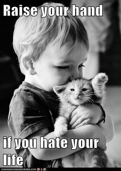 child hate hug kill me now kitten life toddler - 6245193984