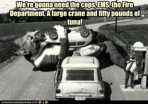 big cops crane ems fire department giant huge massive road road block tuna