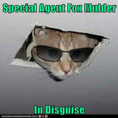 Special Agent Fox Mulder  In Disguise