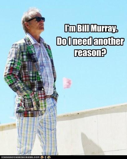 actor bill murray celeb funny - 6246246912