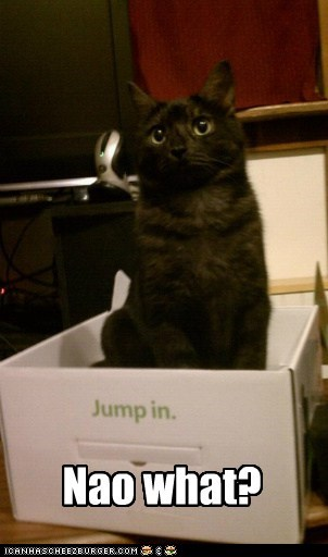 box directions follow directions jump in next now what