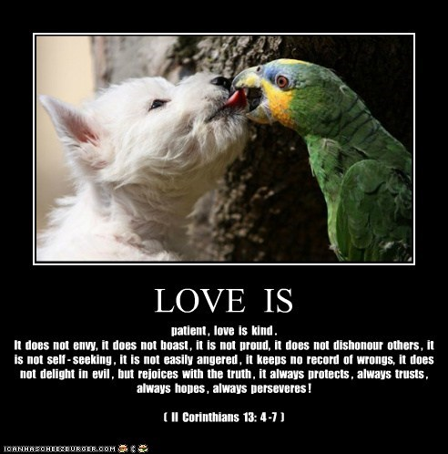 LOVE IS patient , love is kind . It does not envy, it does not boast , it is not proud, it does not dishonour others , it is not self - seeking , it is not easily angered , it keeps no record of wrongs, it does not delight in evil , but rejoices with the truth , it always protects , always trusts , always hopes , always perseveres ! ( II Corinthians 13: 4 -7 )