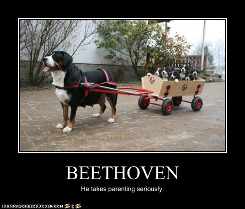 BEETHOVEN He takes parenting seriously.
