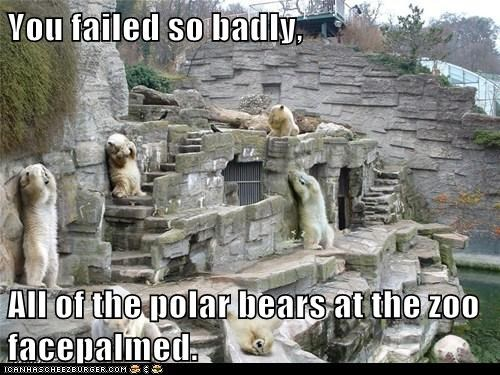 bears extreme facepalm FAIL FAILS polar bears you suck zoo zoos - 6248282368