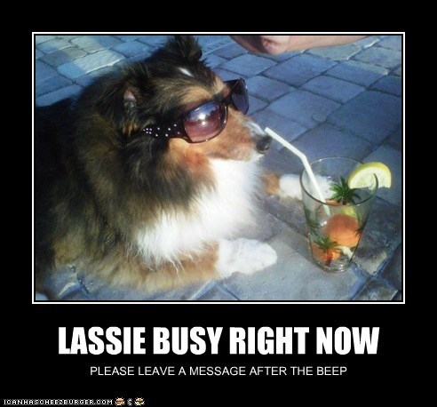 LASSIE BUSY RIGHT NOW PLEASE LEAVE A MESSAGE AFTER THE BEEP