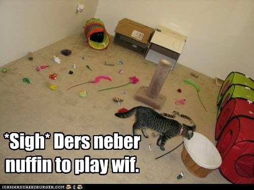 bored Cats lolcats messes messy nothing play playing sigh spoiled toys - 6248822272