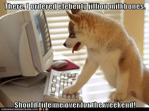 computer dogs huskie milkbone - 6249635584