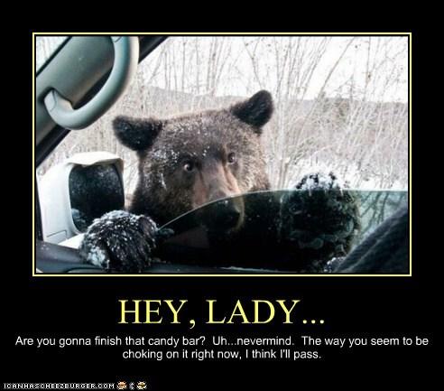 bear car snow trees window - 6249791744