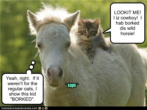 KK2012 Ridin horsies!