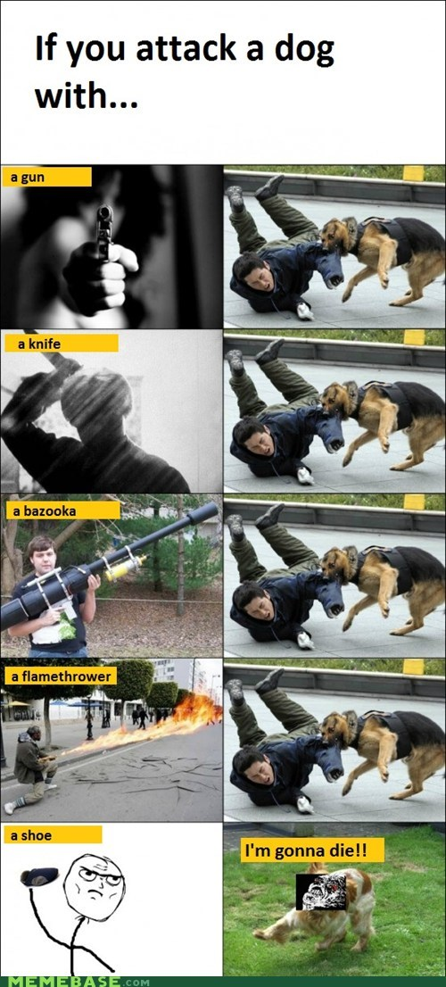 bite,dogs,gun,lassie,Rage Comics,shoe