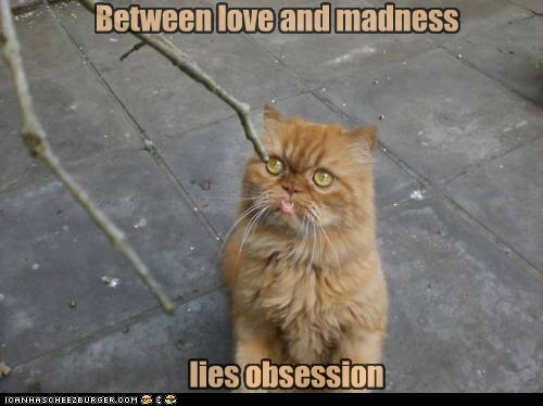 Between love and madness lies obsession