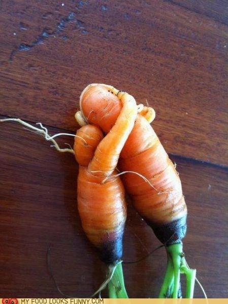 carrots embrace hug love sweet - 6250558464