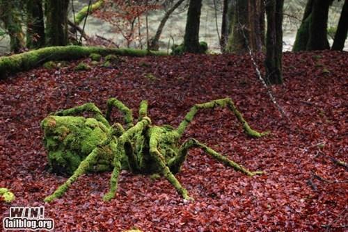 art nature sculpture spider wincation - 6250756864
