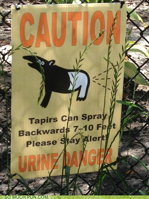 caution danger Hall of Fame homophones sign urine youre-in zoo - 6250766080