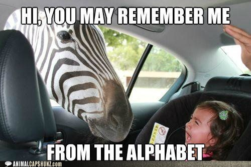 alphabet,crying,little kids,remember,scared,zebra
