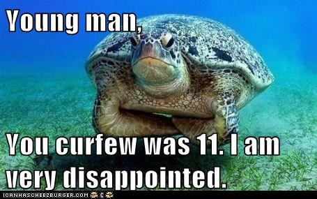 crossed arms,curfew,dad,disappointed,turtle,young man