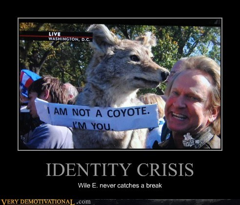 a break hilarious identity crisis wile e coyote - 6252508416