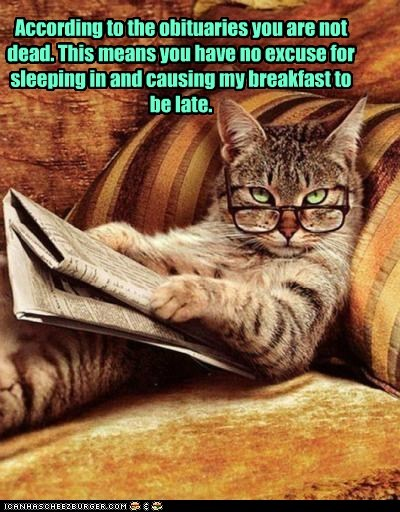 According to the obituaries you are not dead. This means you have no excuse for sleeping in and causing my breakfast to be late.