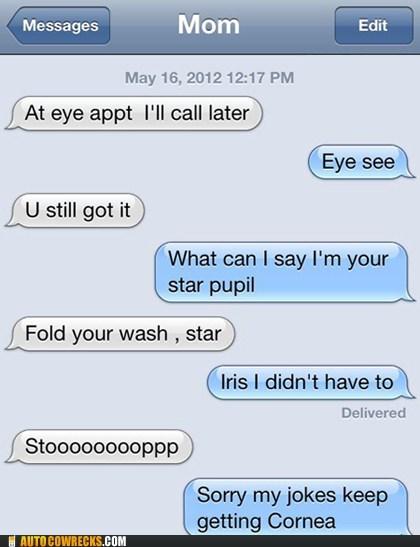 corny jokes eye humor iPhones So Much Pun so punny - 6253165312