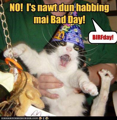 NO! I's nawt dun habbing mai Bad Day! BIRFday!