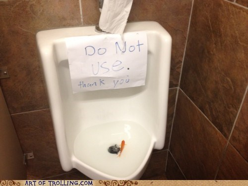 fish,IRL,urinal,wtf