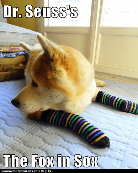 dogs,dr seuss,fox,fox in socks,shiba inu,socks
