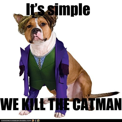 batman,Cats,costume,dogs,its-simple,joker,kill the batman,puns,the joker