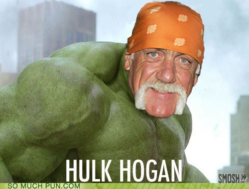 Hall of Fame Hulk Hogan literalism mashup same name The Avengers the hulk