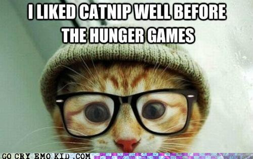 books catnip Hipster Kitty hipsterlulz hunger games katniss Movie - 6254325248