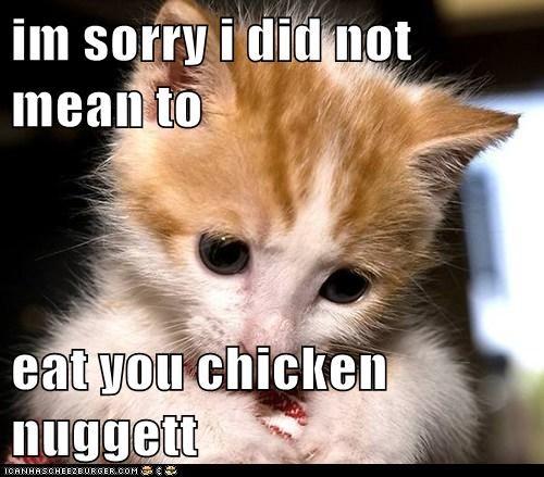 Cheezburger Image 6254682368