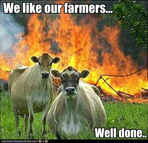 evil,evil cows,farmers,fires,meat,Memes,well done
