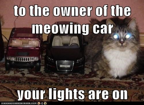 announcement,car,headlights,lights,meow,on