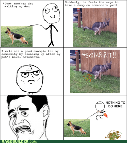 dogs,nothing to do here,pooptimes,Rage Comics