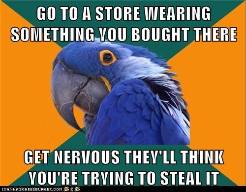 Paranoid Parrot - 6255258624
