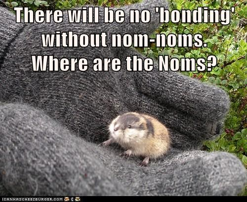 There will be no 'bonding' without nom-noms. Where are the Noms?