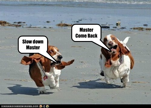 Master Come Back Slow down Master