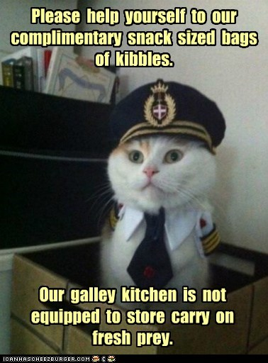 Please help yourself to our complimentary snack sized bags of kibbles. Our galley kitchen is not equipped to store carry on fresh prey.