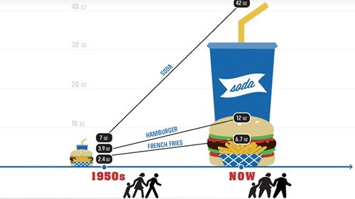 CDC infographic meal size