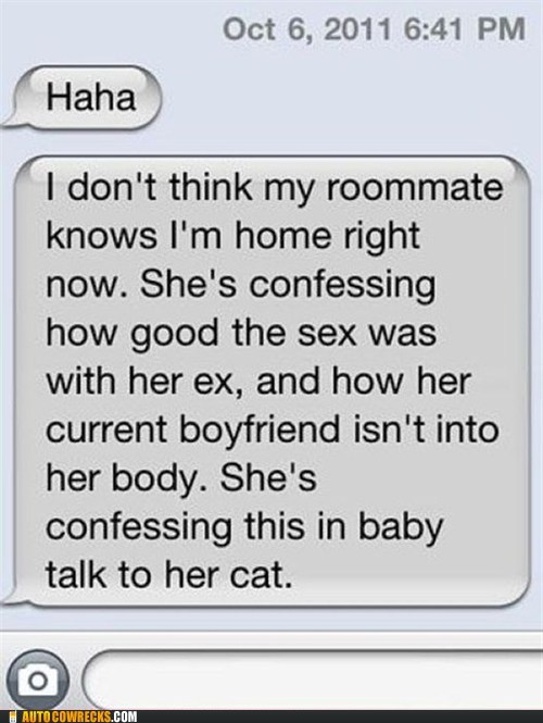 AutocoWrecks baby talk iPhones roommate talking to your cat - 6256696064