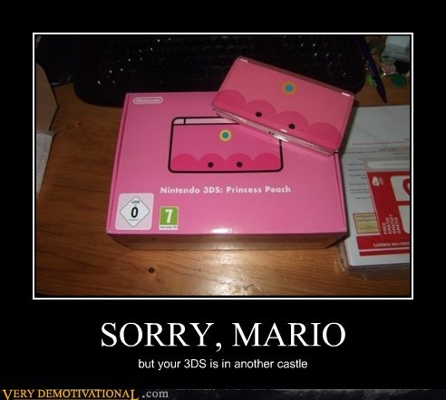 SORRY, MARIO but your 3DS is in another castle