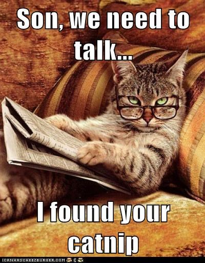confront dad drugs found glasses newspaper nip read son talk - 6256778752