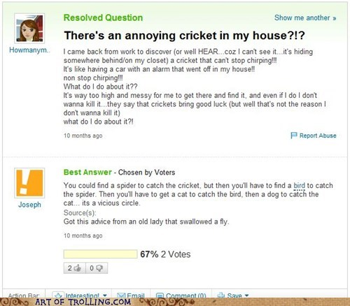 cricket,fly,song,Yahoo Answer Fai,Yahoo Answer Fails