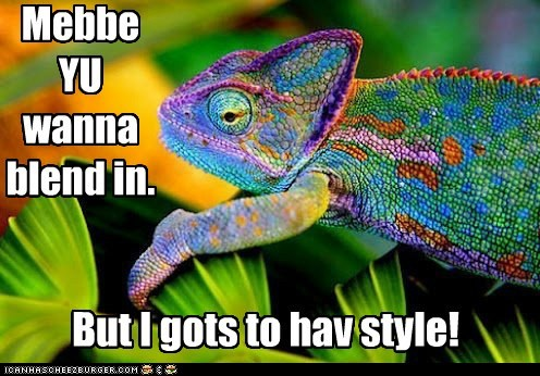 blending in,chameleon,changing,colors,lizard,style