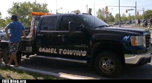 camel towing,funny name,pun,tow truck
